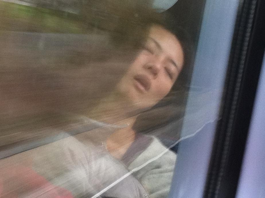 Sleeping on a Train 2