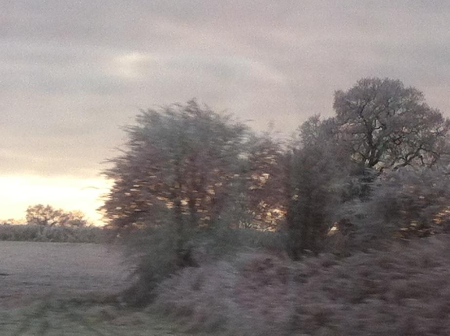 Winter1504