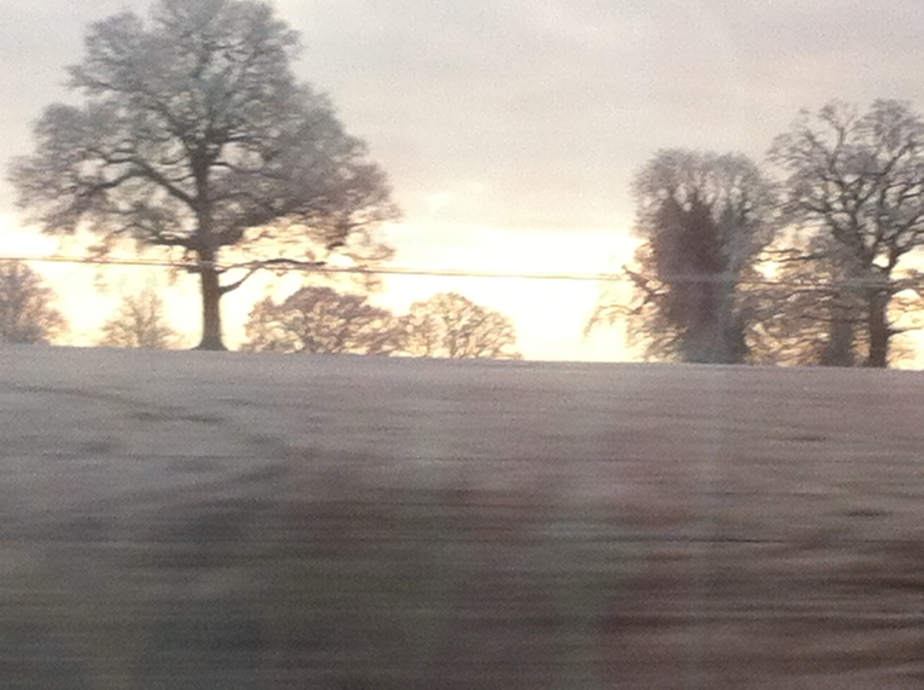 Winter1505