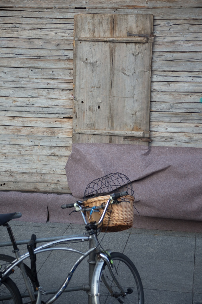 bicycle and shed