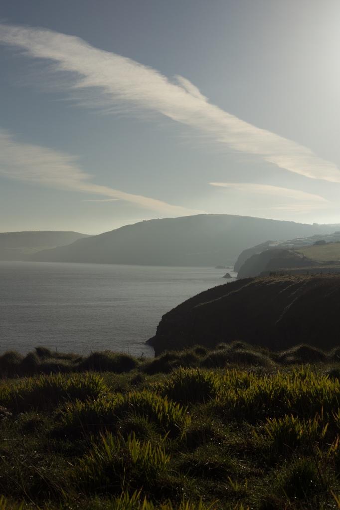 cardigan coast