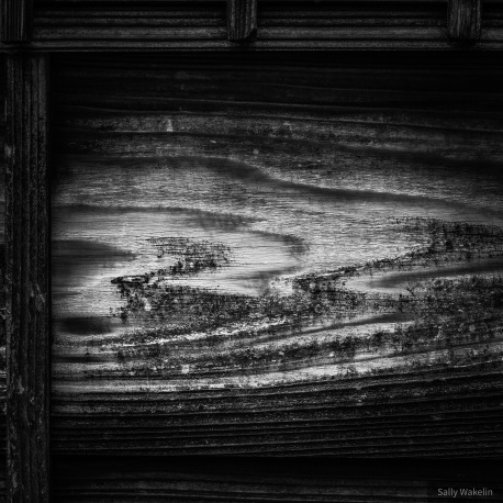 Ancient weathered wood